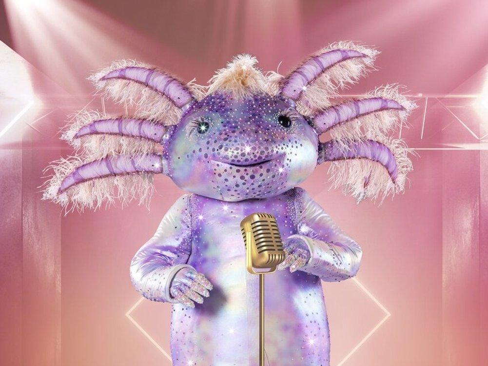 """""""The Masked Singer"""": Das wandelbare Axolotl ist mit dabei"""